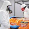 Микробиология - средства защиты